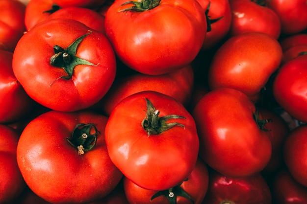 tuteurer des tomates