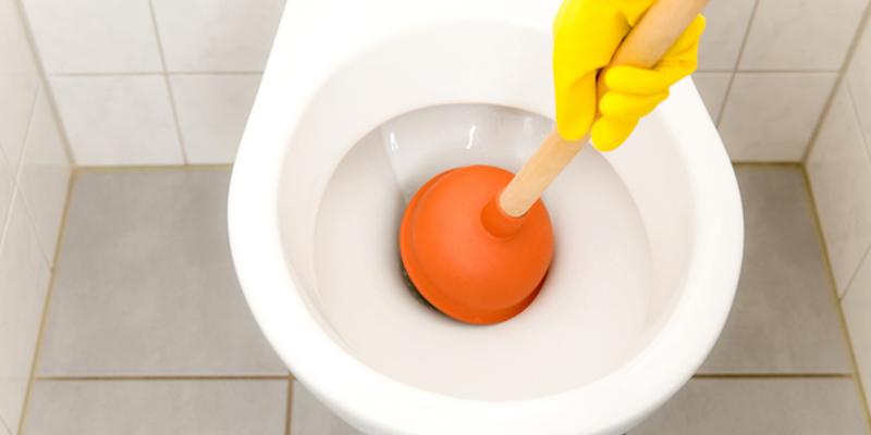 Plongeur dans une toilette