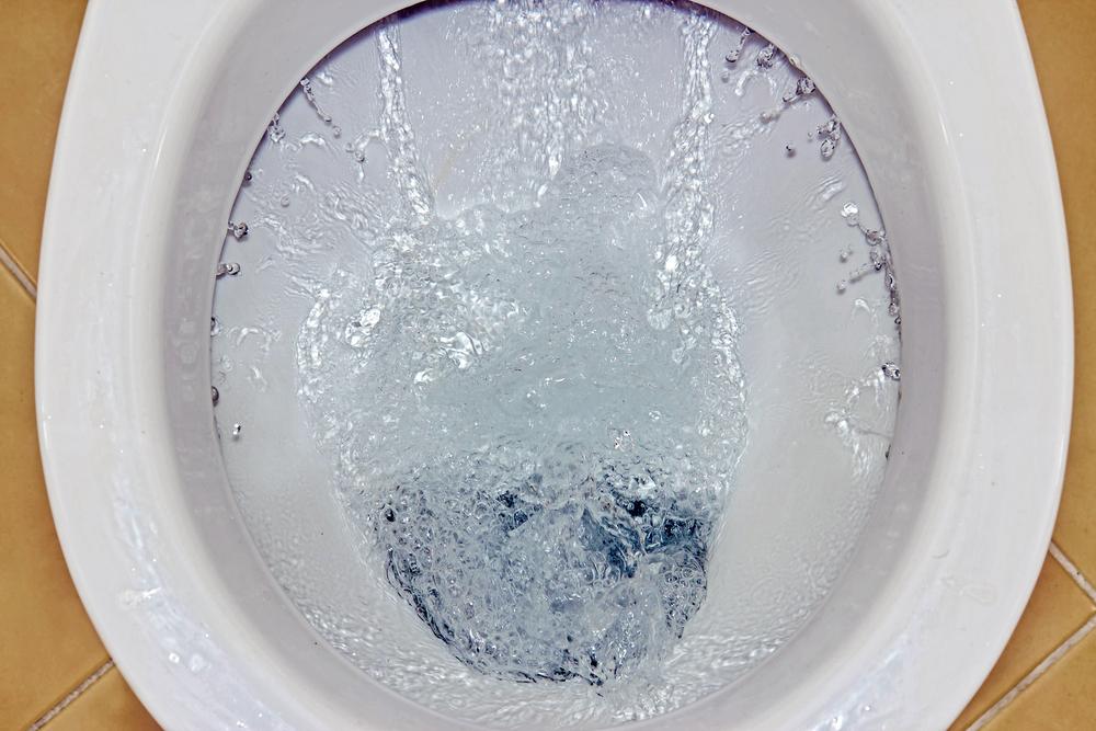 mauvaise chasse d'eau