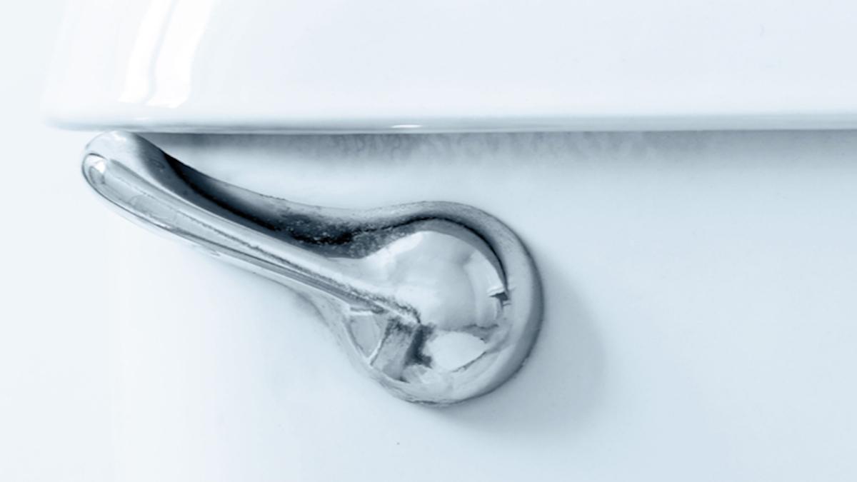 Wiggling toilet handle